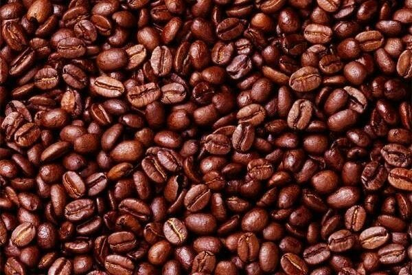 قهوه عربیکا اوگاندا