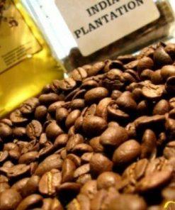 قهوه عربیکا هند پلنتیشن