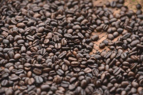 قهوهه عربیکا نیکاراگوئه